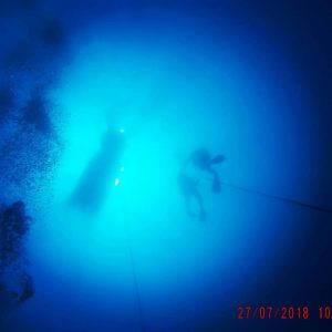 reef-dive