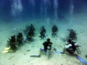Dive-courses