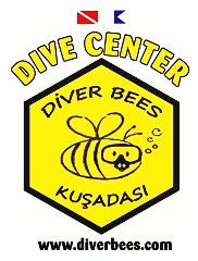DiverBees