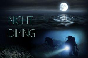 night_dive-TR5
