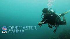 dive_master