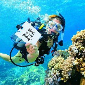 try-dive-en