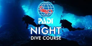 padi-night-dive-course