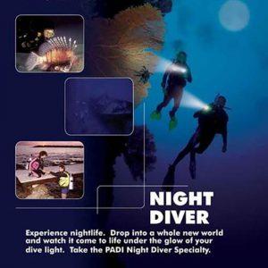 padi-night-diver