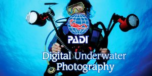 padi-digital-underwater-photography
